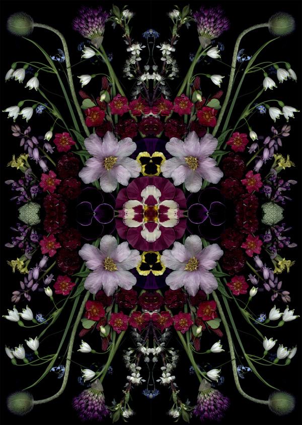 Craig Cramer bloom mandala1
