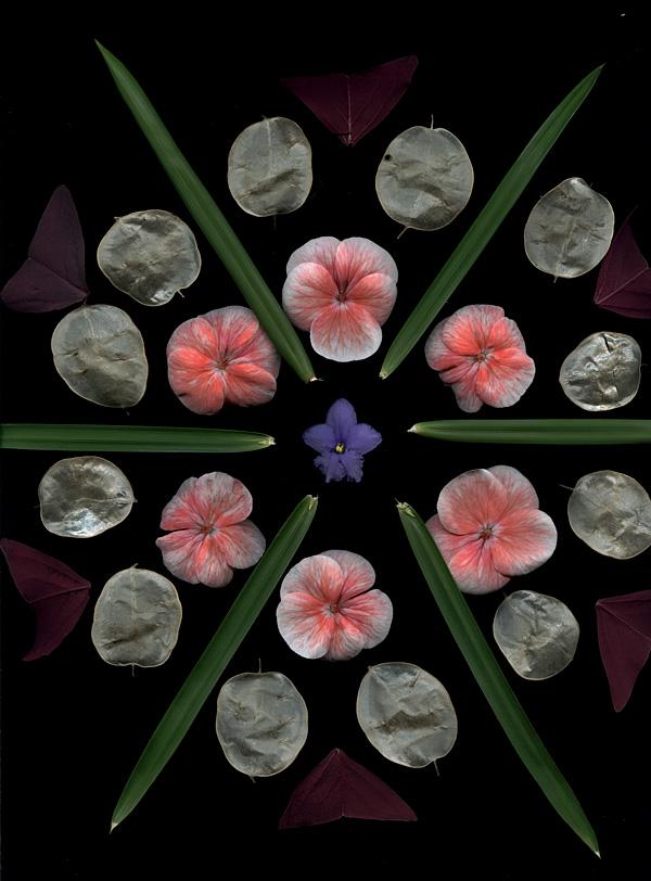 Craig Cramer bloom mandala3