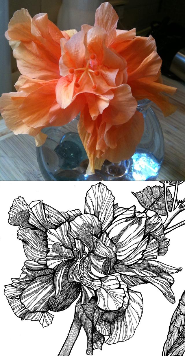 Hibiscus_Shoot it, Ink it