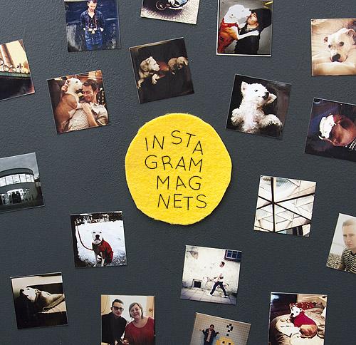 design spong instagram magnets