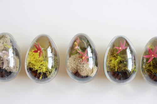Easter egg terrariums2