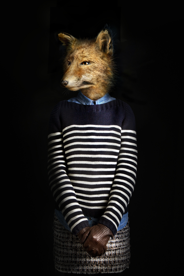 dressed animals Photographed by Miguel Vallinas1