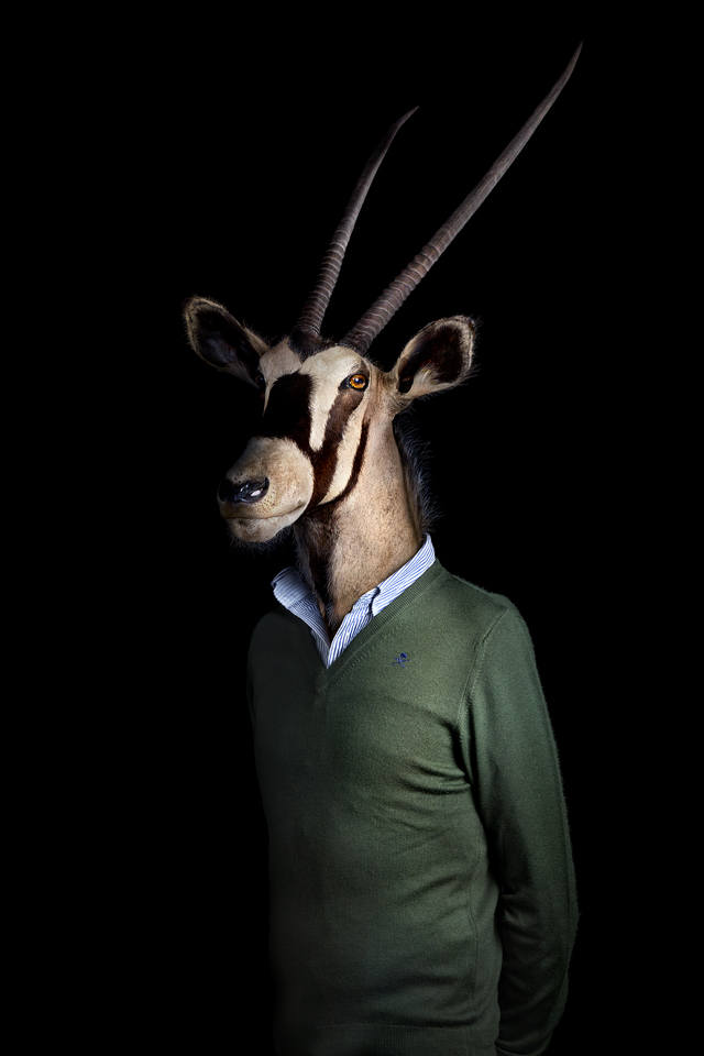 dressed animals Photographed by Miguel Vallinas
