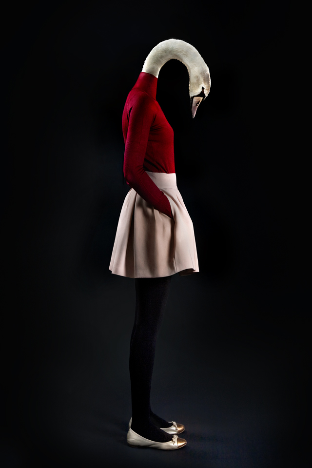 dressed animalsPhotographed by Miguel Vallinas 4