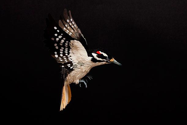 Diana Beltran Herrera's Flock of Paper Birds3