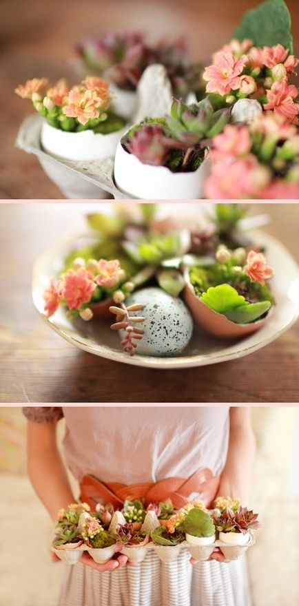 egg garten