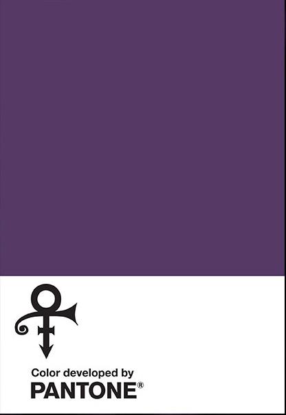Purple Rain_ PANTONE
